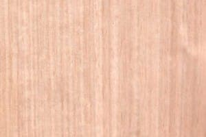 Victorian or Tasmanian Ash – Qtr only
