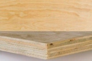 C/D Untreated Radiata Plywood 2700x1200mm